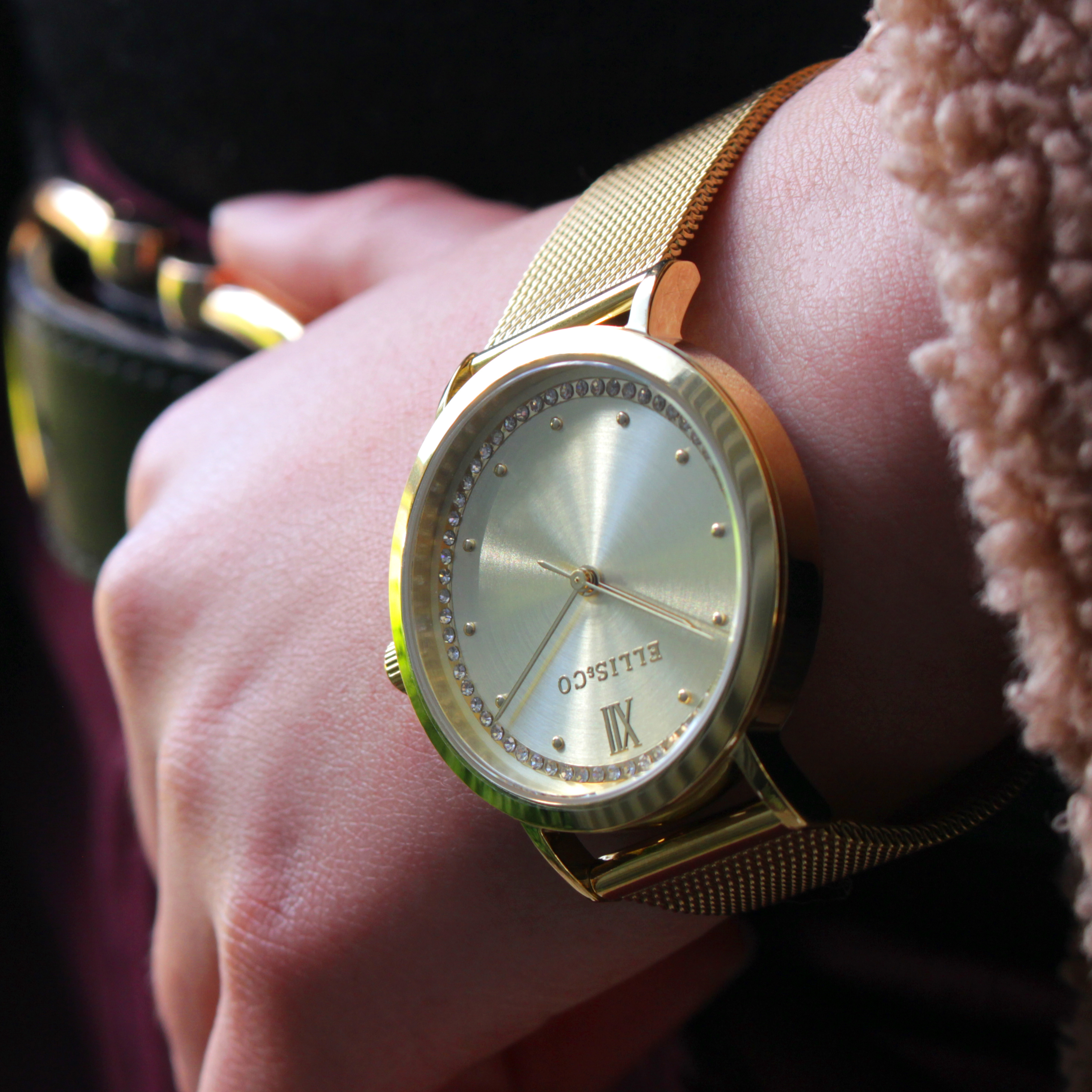 Ellis & Co Akira Gold Stainless Steel Mesh Womens Watch