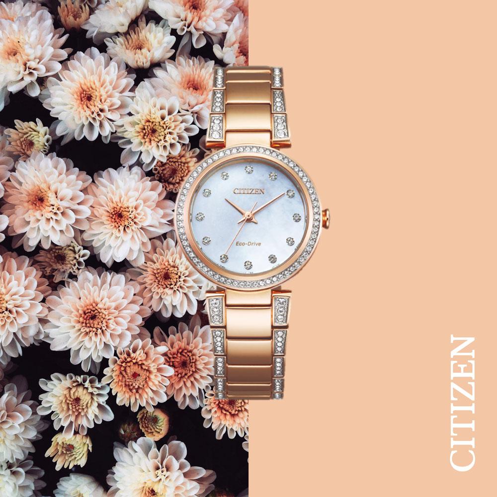 Citizen Eco-Drive Rose EM0843-51D Womens Watch